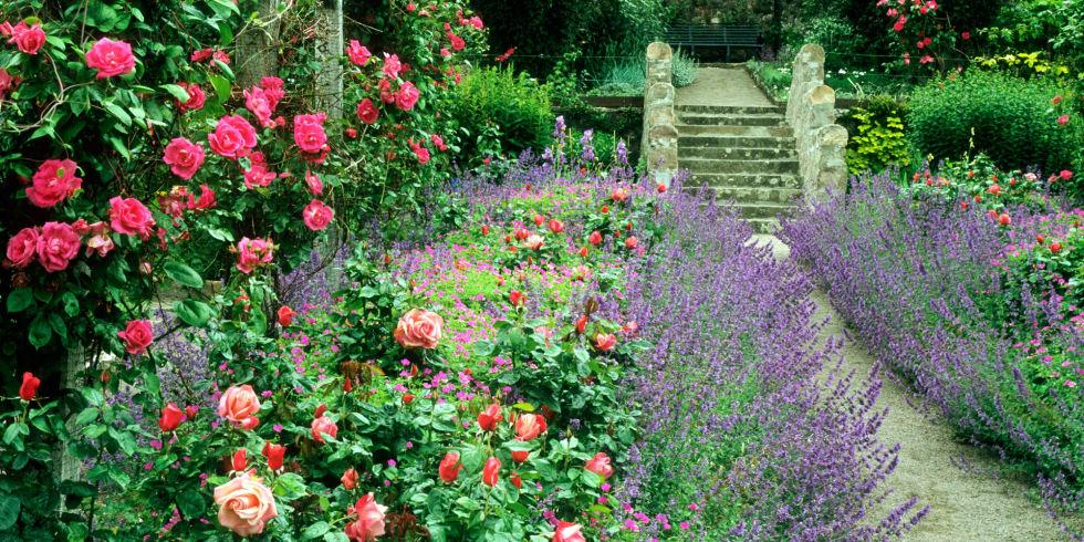 Cottage style garden – just look how you can arrange your rustic garden